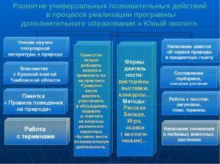 Развитие универсальных познавательных действий в процессе реализации программ