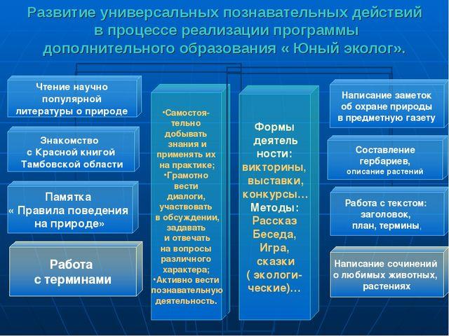 Развитие универсальных познавательных действий в процессе реализации программ...