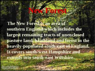 New Forest The New Forest is an area of southern England which includes the l
