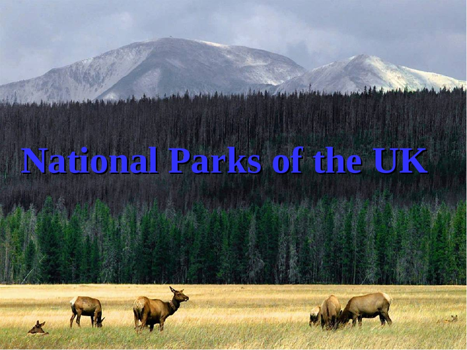 National Parks of the UK