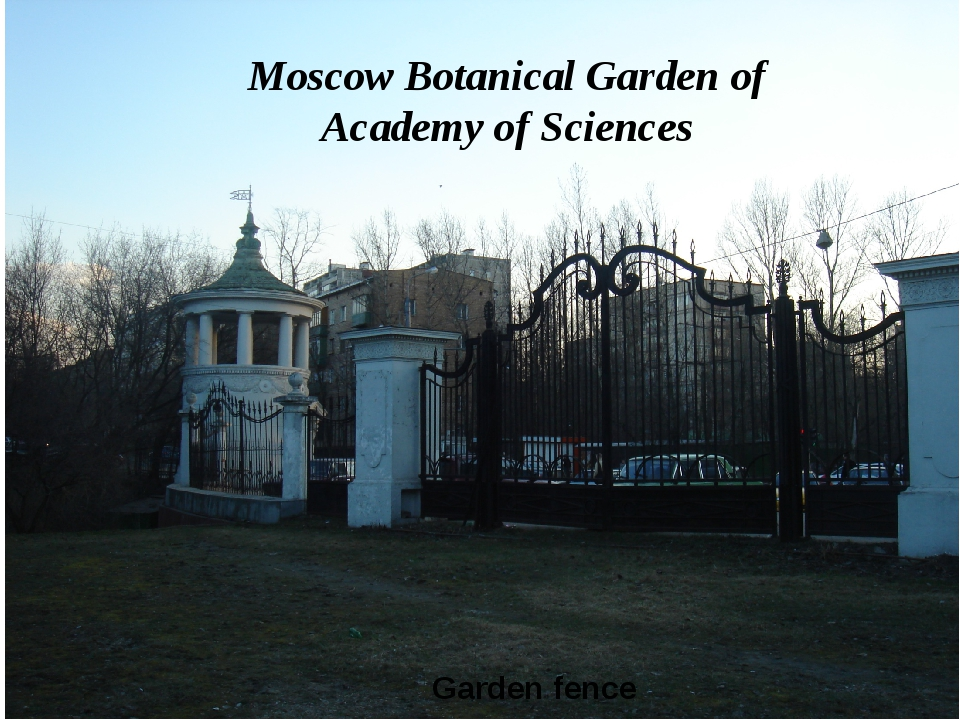 Garden fence Moscow Botanical Garden of Academy of Sciences