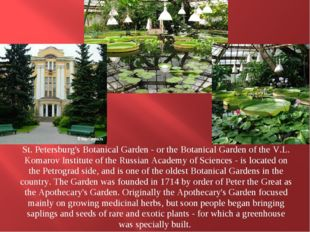 St. Petersburg's Botanical Garden - or the Botanical Garden of the V.L. Koma