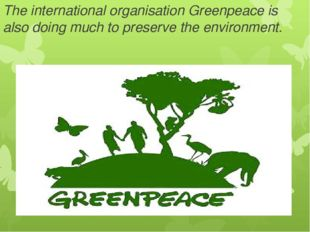 The international organisation Greenpeace is also doing much to preserve the