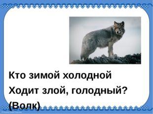 Кто зимой холодной Ходит злой, голодный? (Волк)