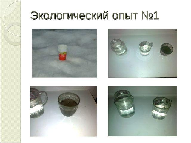 Экологический опыт №1