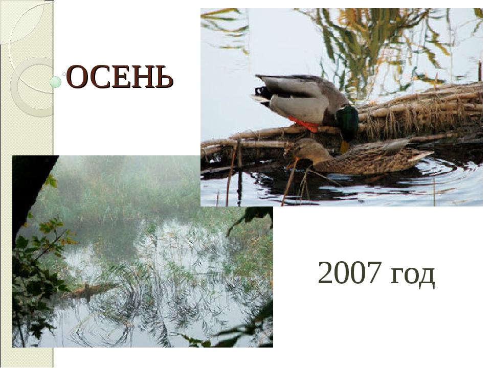 ОСЕНЬ 2007 год