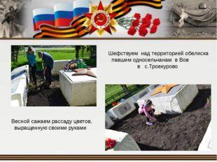 Шефствуем над территорией обелиска павшим односельчанам в Вов в с.Троекурово