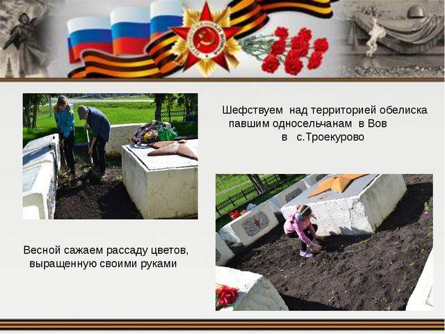 Шефствуем над территорией обелиска павшим односельчанам в Вов в с.Троекурово...