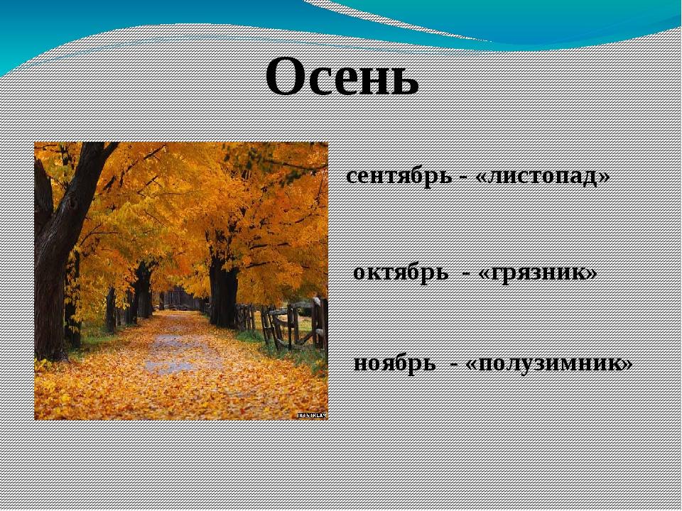 Осень сентябрь - «листопад» октябрь - «грязник» ноябрь - «полузимник»