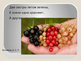 Две сестры летом зелены, К осени одна краснеет, А другая чернеет. Витамин