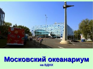 Московский океанариум на ВДНХ