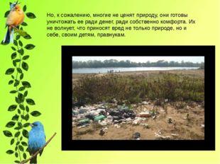 Но, к сожалению, многие не ценят природу, они готовы уничтожать ее ради дене