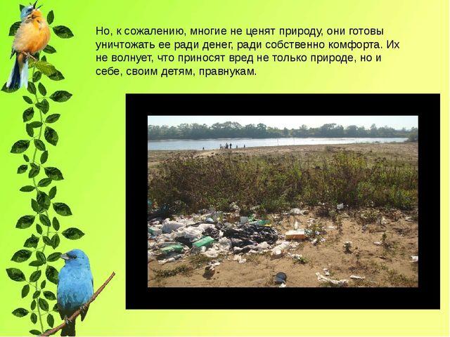 Но, к сожалению, многие не ценят природу, они готовы уничтожать ее ради дене...