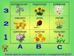 Какой цветок находится в клетке с координатой (В,2)? колокольчикподсолнухр