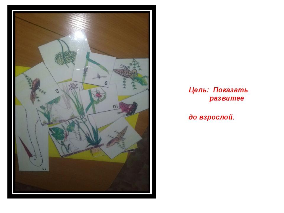 Дидактическая игра: «Как ж живет лягушка» игра: Цель: Показать детям развити...