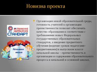 Новизна проекта Организация новой образовательной среды, готовность учителей