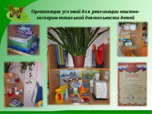 Организация условий для реализации опытно-экспериментальной деятельности детей