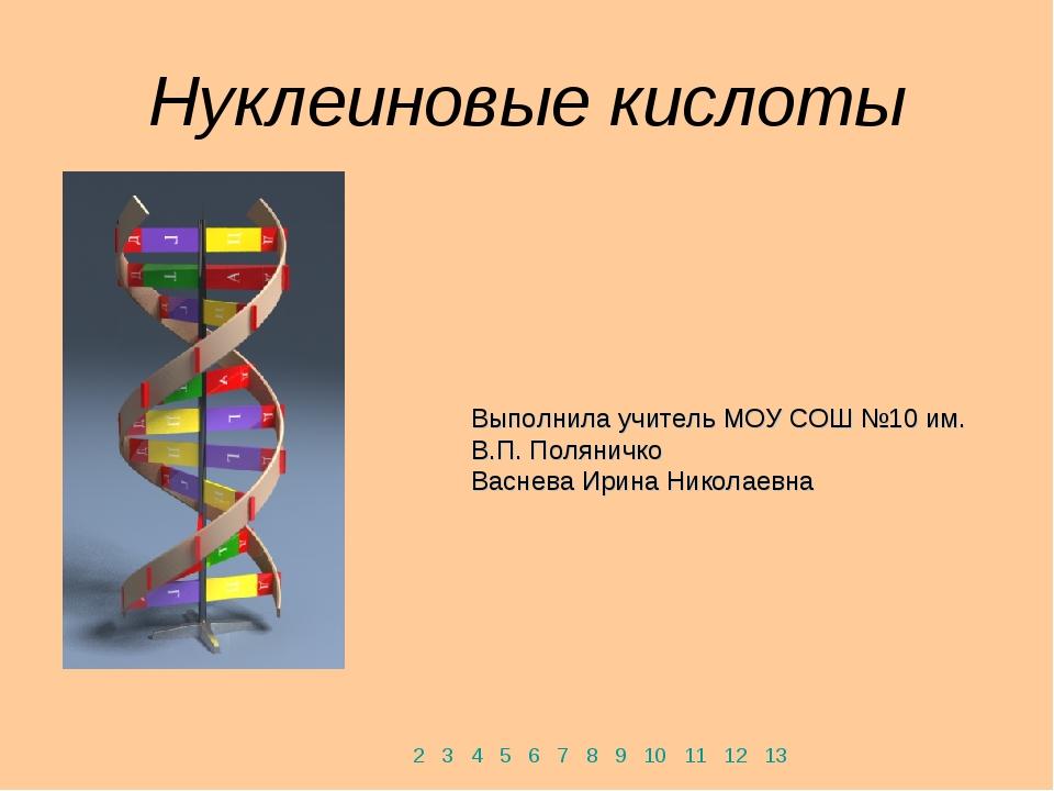 Нуклеиновые кислоты 2 3 4 5 6 7 8 9 10 11 12 13 Выполнила учитель МОУ СОШ №10...