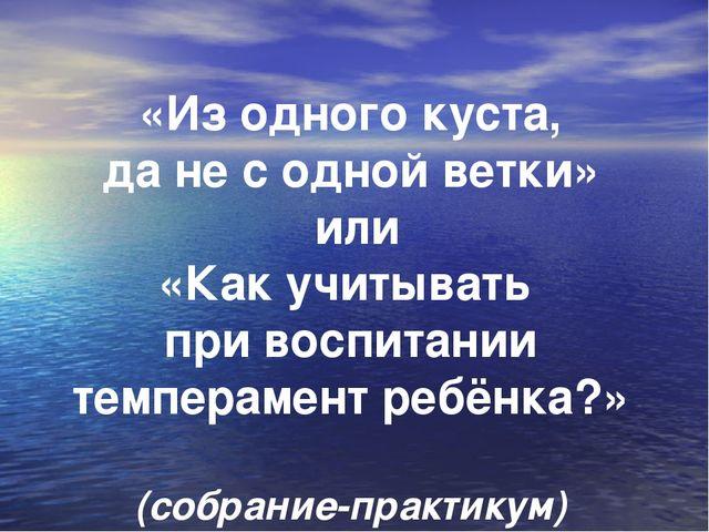 «Из одного куста, да не с одной ветки» или «Как учитывать при воспитании тем...
