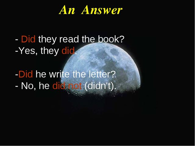 An Answer - Did they read the book? -Yes, they did. -Did he write the letter?...