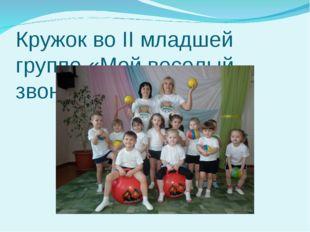 Кружок во II младшей группе «Мой веселый звонкий мяч»