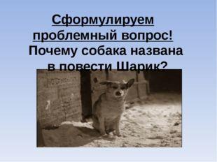 Почему собака названа в повести Шарик? Сформулируем проблемный вопрос!