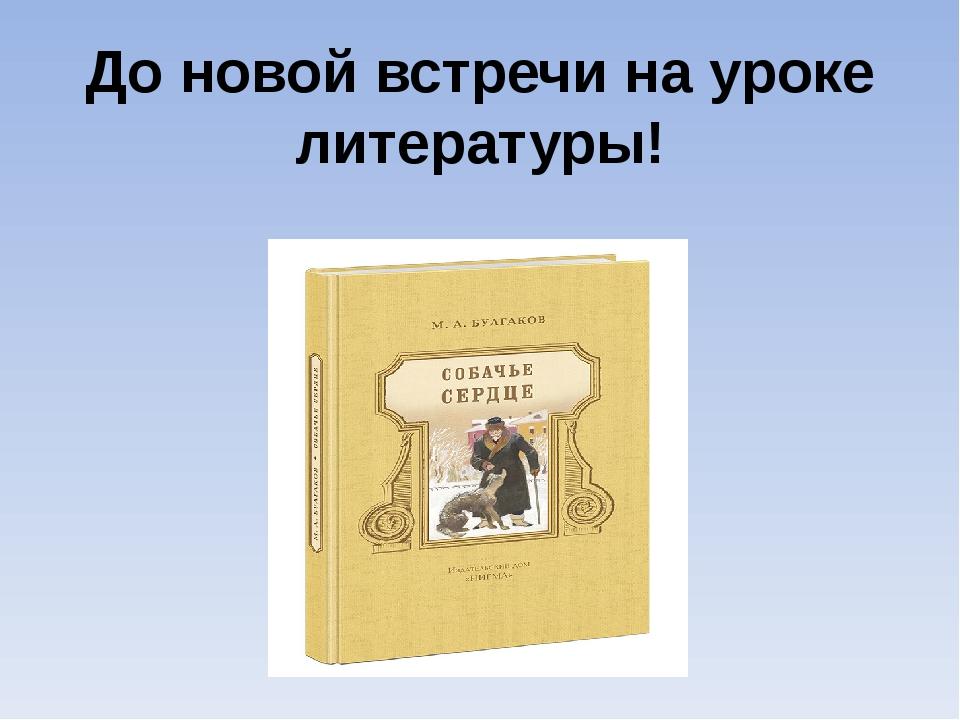 До новой встречи на уроке литературы!