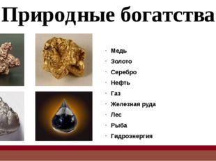 Природные богатства Медь Золото Серебро Нефть Газ Железная руда Лес Рыба Гидр
