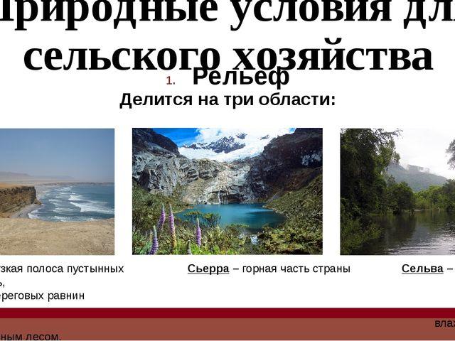 Природные условия для сельского хозяйства Рельеф Делится на три области: Кост...