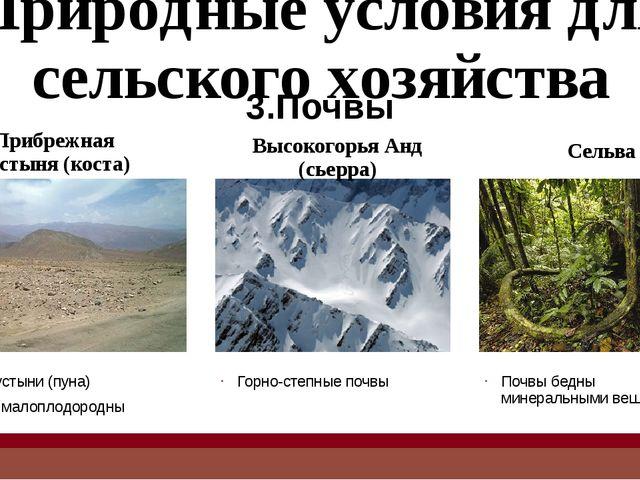 Главные отрасли сельского хозяйства Основные сельскохозяйственные культуры пр...
