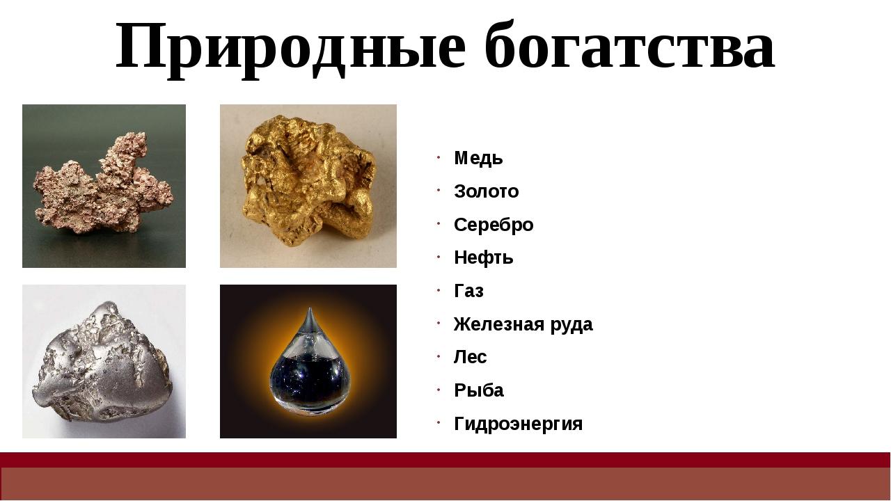 Природные богатства Медь Золото Серебро Нефть Газ Железная руда Лес Рыба Гидр...