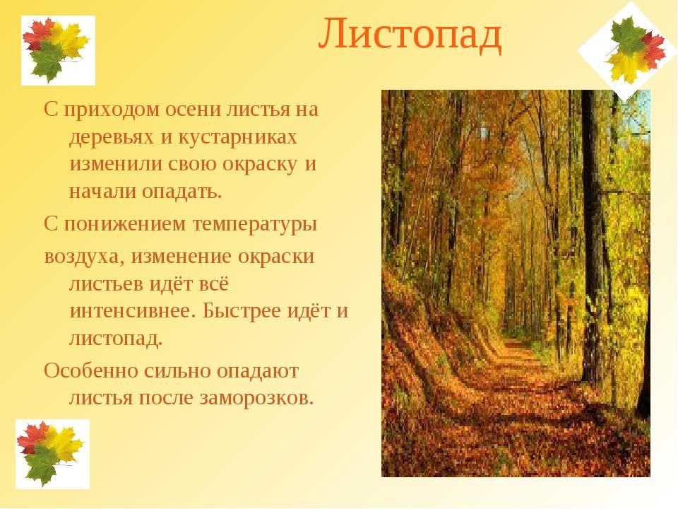 Листопад С приходом осени листья на деревьях и кустарниках изменили свою окр...