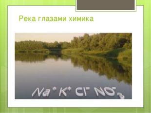 Река глазами химика