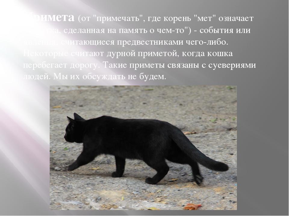 """Примета(от """"примечать"""", где корень """"мет"""" означает """"заметка, сделанная на пам..."""