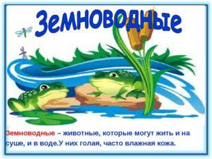 Земноводные – животные, которые могут жить и на суше, и в воде.У них голая, ч