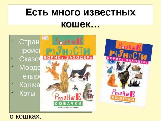 Есть много известных кошек… В доме Заходера всегда жили животные – собаки и к...