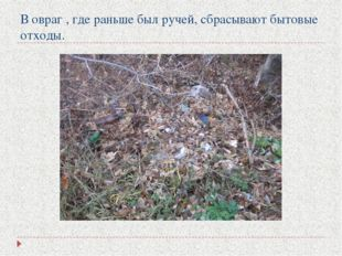 В овраг , где раньше был ручей, сбрасывают бытовые отходы.