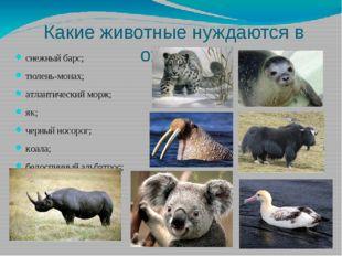 Какие животные нуждаются в охране: снежный барс; тюлень-монах; атлантический