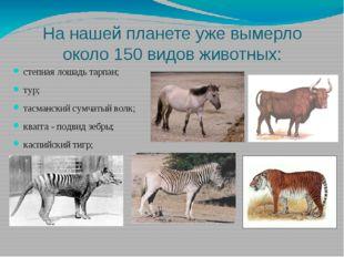 На нашей планете уже вымерло около 150 видов животных: степная лошадь тарпан;