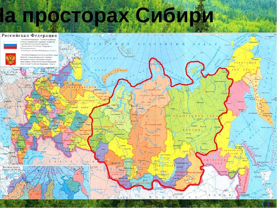 На просторах Сибири