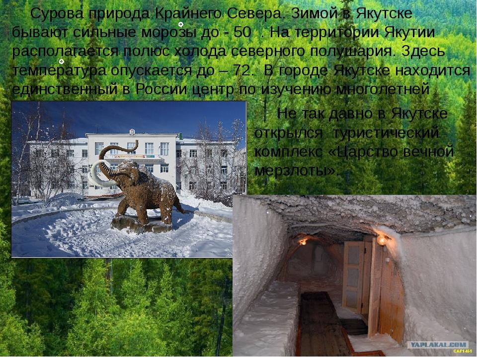 Сурова природа Крайнего Севера. Зимой в Якутске бывают сильные морозы до - 5...