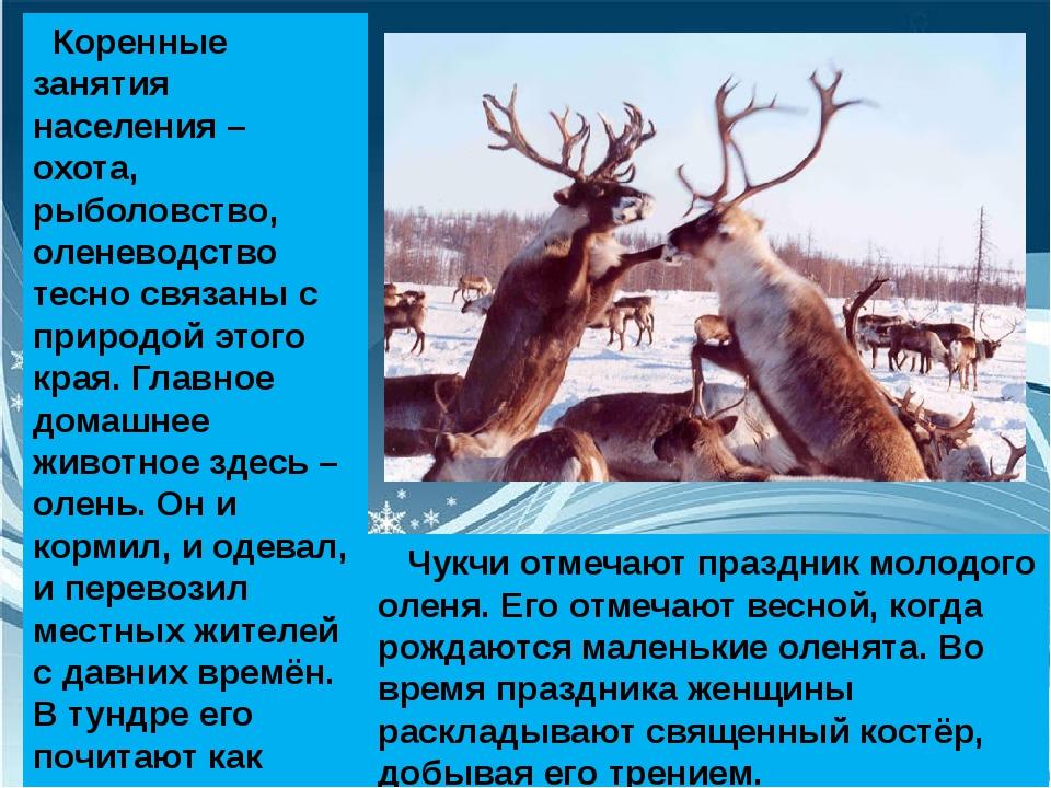 Коренные занятия населения – охота, рыболовство, оленеводство тесно связаны...