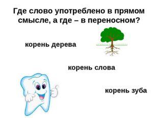 Где слово употреблено в прямом смысле, а где – в переносном? корень дерева ко