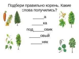 Подбери правильно корень. Какие слова получились? _____а _____ка под_____овик