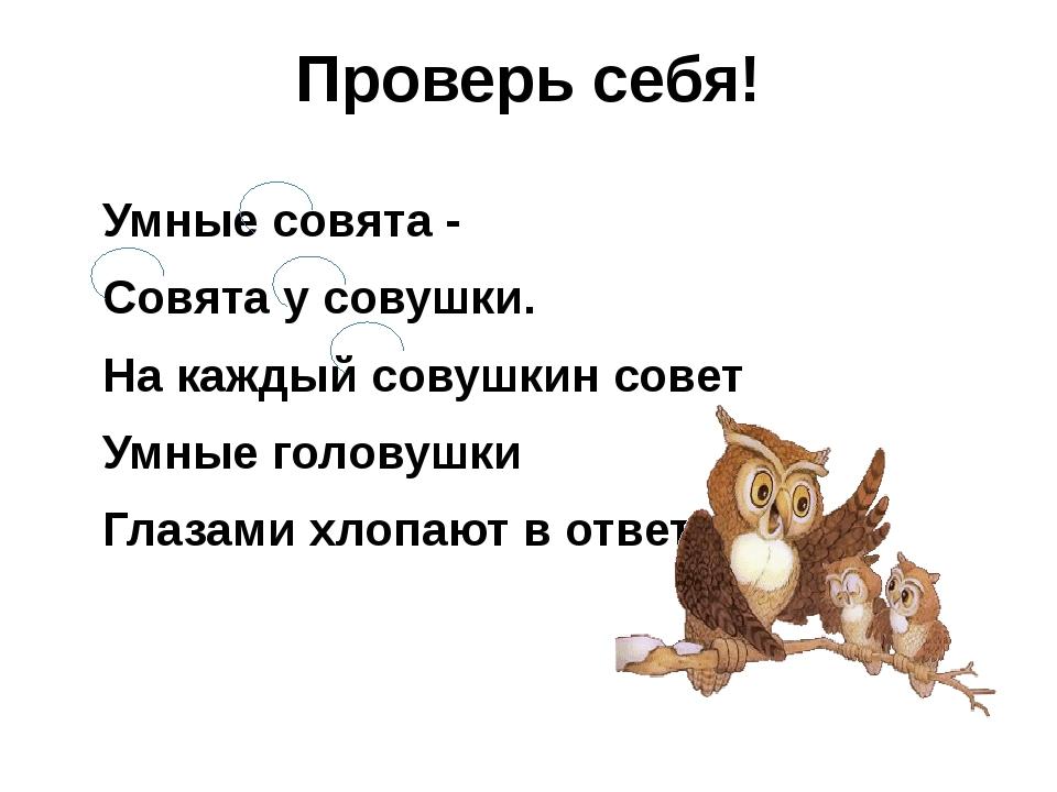 Проверь себя! Умные совята - Совята у совушки. На каждый совушкин совет Умные...