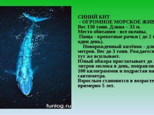 СИНИЙ КИТ - ОГРОМНОЕ МОРСКОЕ ЖИВОТНОЕ Вес 150 тонн. Длина – 33 м. Место обита