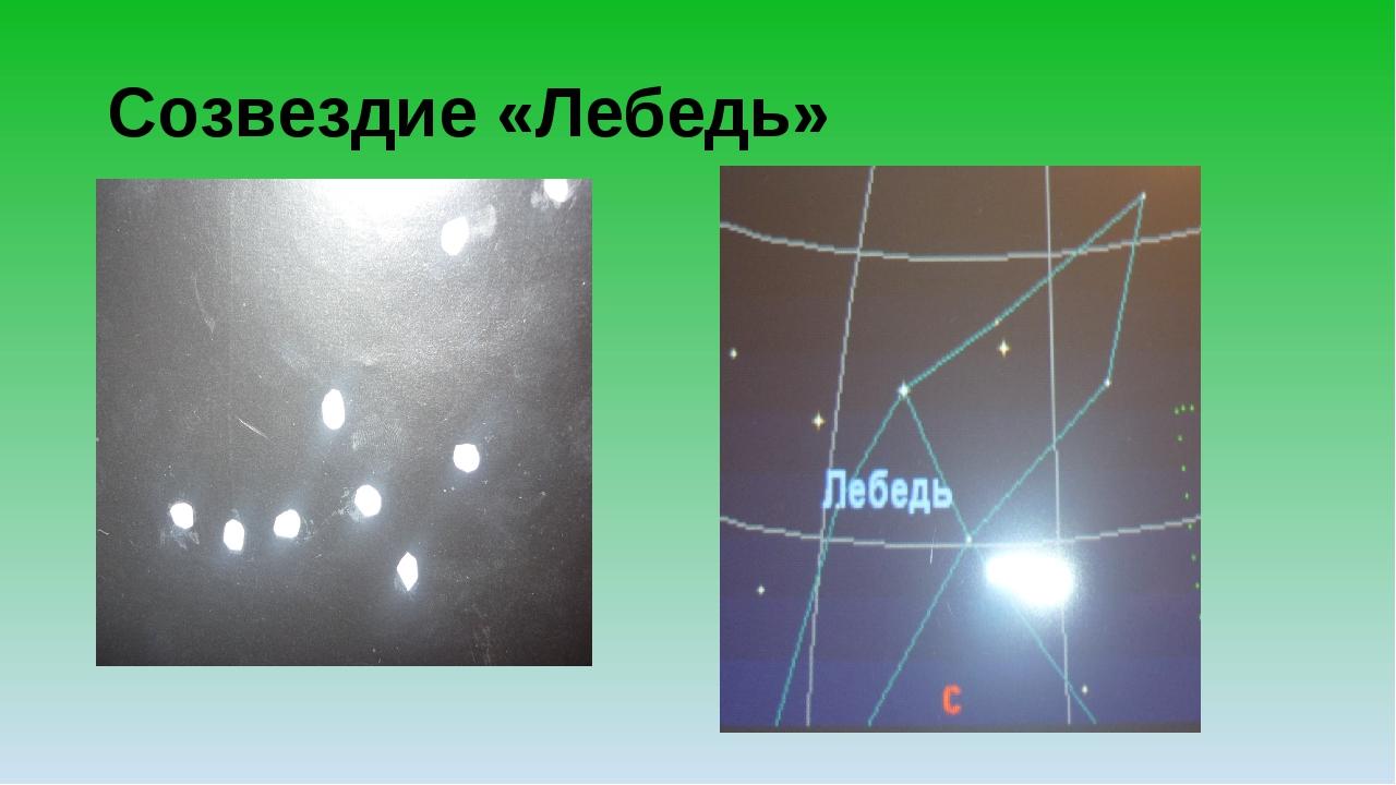 Созвездие «Лебедь»