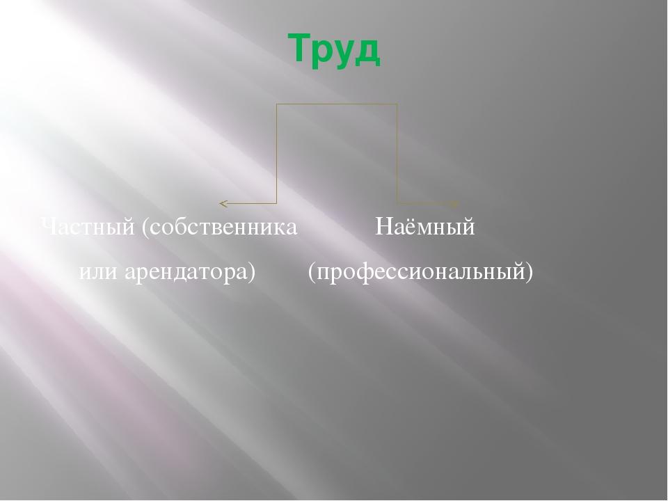 Труд Частный (собственника Наёмный или арендатора) (профессиональный)