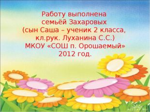 Работу выполнена семьёй Захаровых (сын Саша – ученик 2 класса, кл.рук. Лухани