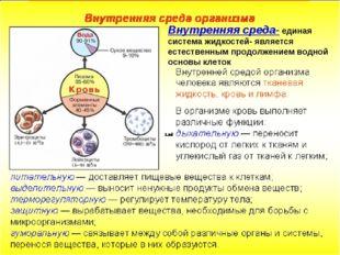 Внутренняя среда- единая система жидкостей- является естественным продолжение
